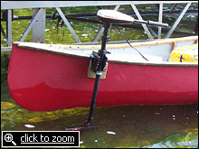 Fleet update for Minn kota electric motor for sale